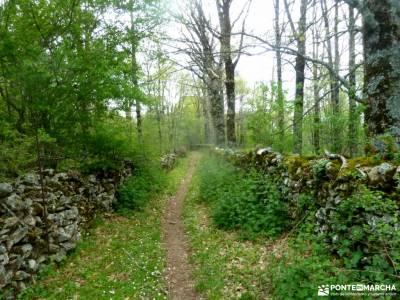 Peña Quemada-Ladera de Santuil; excursiones en andorra parque natural rio lobos sierra de tejeda alm